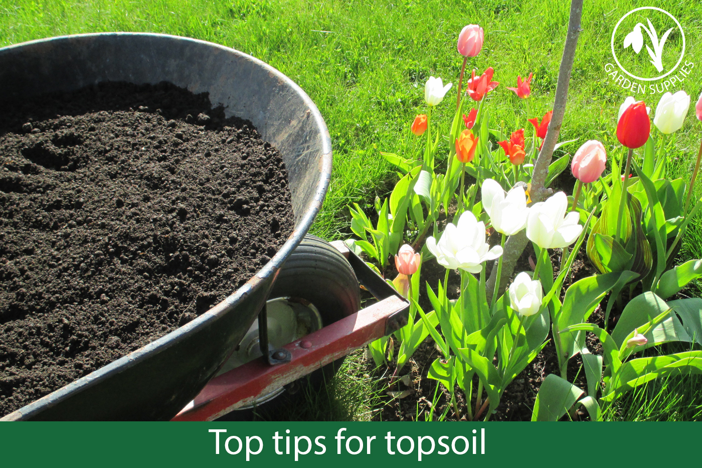 Top tips for topsoil
