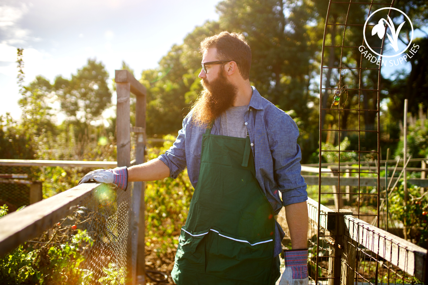 4 Ways in which Gardening can Improve your Mental Health and Well-being
